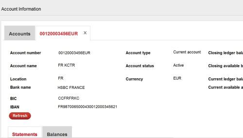 Hsbc Bank Statement Format